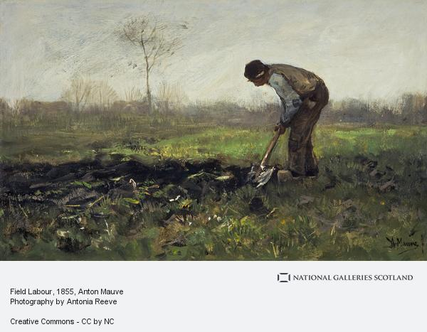 Image of a man working in a field